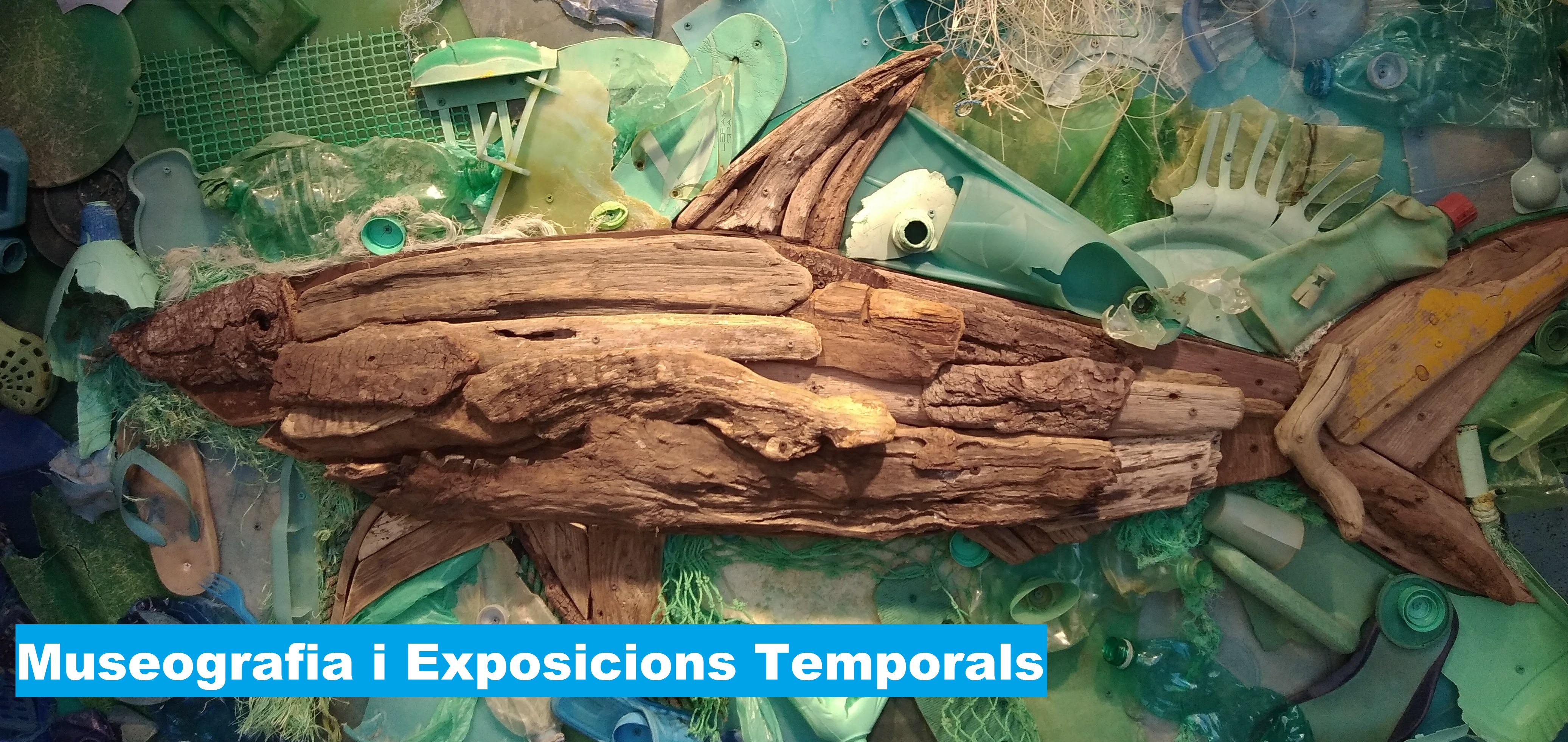 Museografia i exposicions (3501MO2957/2020)